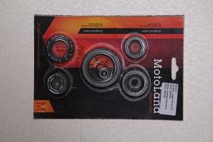 Набор сальников для двигателя СB250 169FMM